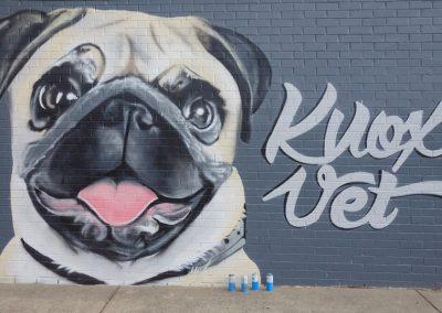 Knox Veterinary Clinic – Knox, Vic